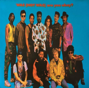 Was (Not Was) - Are You Okay? (LP) (VG/VG++)